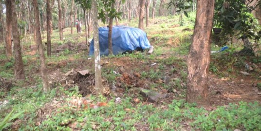 Land for sale at Kannur Dist.