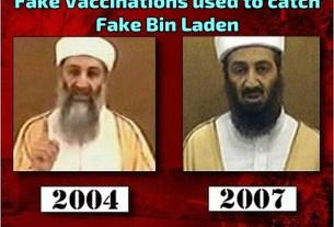 Bin Laden Fake