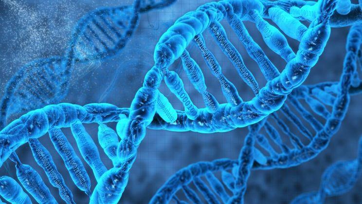 BTWDigiGenetics
