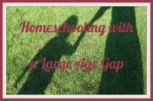Homeschooling with a Large Age Gap