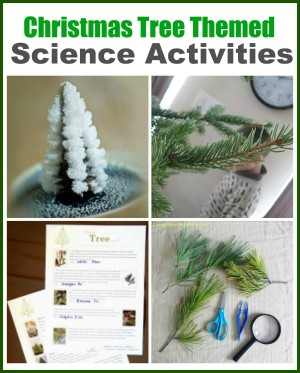 Christmas Tree Science