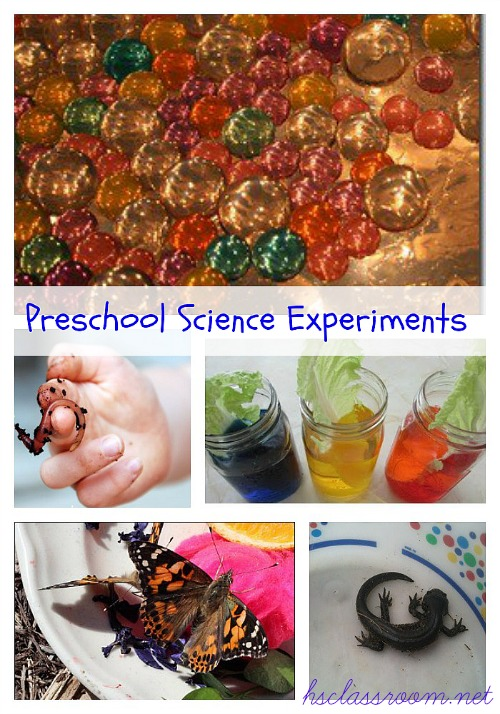 preschool science experiments | reallifeathome.com