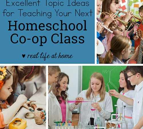 150+ Excellent Topic Ideas for Your Homeschool Co-op Classes