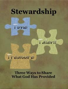 Stewardship Button