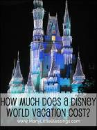 How Much Does a Disney World Vacation Cost?