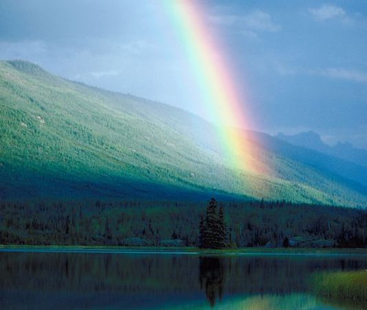 Studying Rainbows: Crafts, Activities, and Science Experiments
