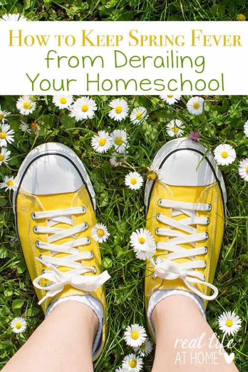 Has spring fever struck at your house? Here are some tips for keeping spring fever from derailing your homeschool with practical ideas everyone can enjoy. | Real Life at Home