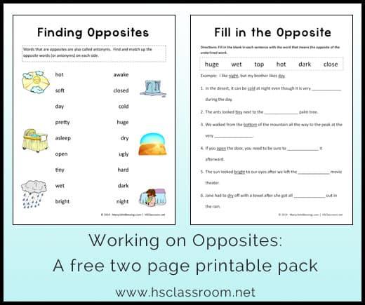 Opposites Worksheet Packets