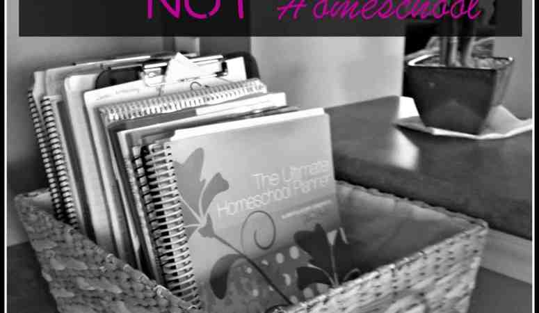 9 Reasons You Should NOT Homeschool