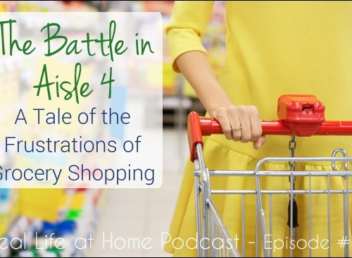 The Battle in Aisle 4: A Tale of the Frustrations of Grocery Shopping with Small Children