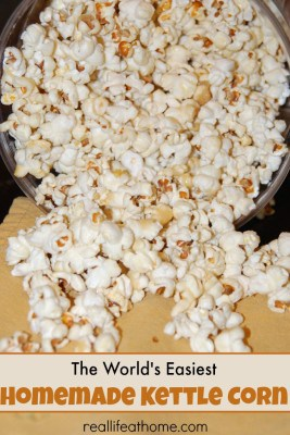 The World's Easiest Homemade Kettle Corn Recipe