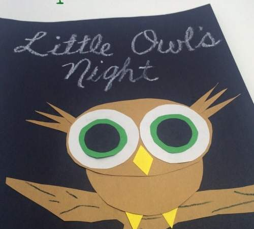 Learning Shapes with Little Owl's Night