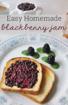 Easy and Delicious Homemade Blackberry Jam {No Special Equipment Required!}