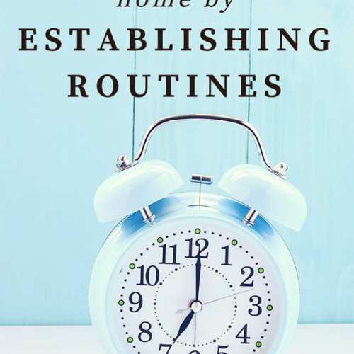 Need to get organized and use your time more efficiently? Here are tips for finding order at home by establishing routines.   Real Life at Home