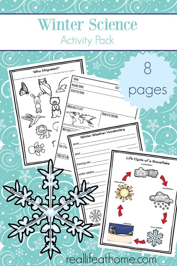 picture relating to Printable Weather Reports identified as Wintertime Science Pursuits: Absolutely free Wintertime Worksheets for Little ones