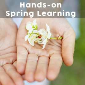 Hands-on Spring Learning – Homeschooling with the Seasons: Spring