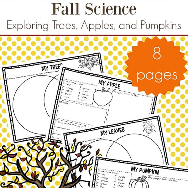graphic relating to Fall Printable Activities called Slide Science Routines: Absolutely free Tumble Science Worksheets for Young children