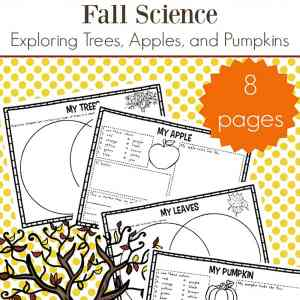Free fall science worksheets packet focusing on trees, apples, and pumpkins. Fall is a great time to explore nature and this free learning packet for elementary-aged kids will help.