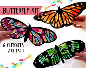 Butterfly Kit from HelloSprout on Etsy