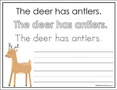 Deer Handwriting Page (from free Woodland Animals Handwriting Packet)