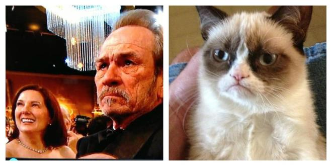 tommy-lee-grumpy-cat