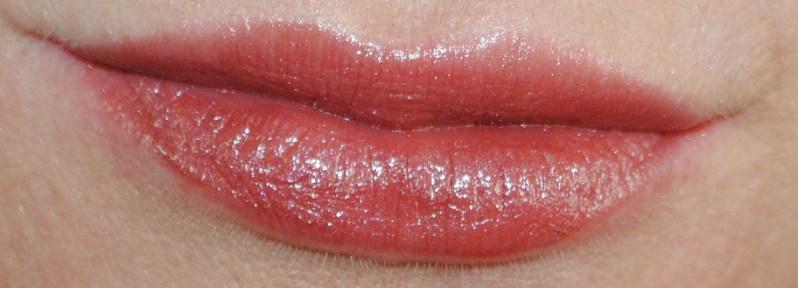 clarins-autumn-2014-rouge-eclat-lipstick-swatch-chestnut-brown-19