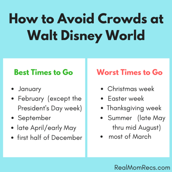 Disney World crowds