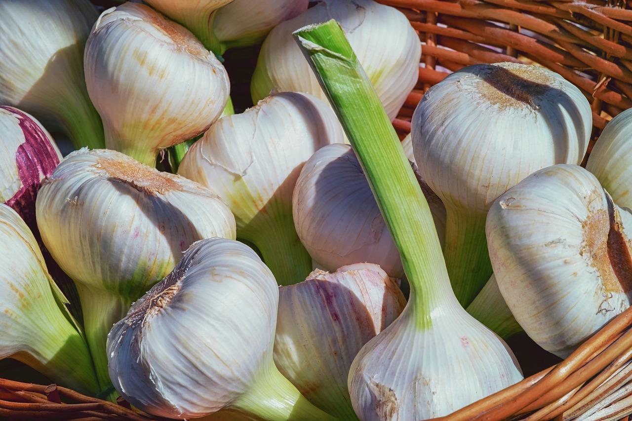 Garlic Extract Stops Leukemia Growth | Heal Naturally