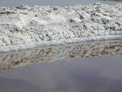 processed salt versus whole salt