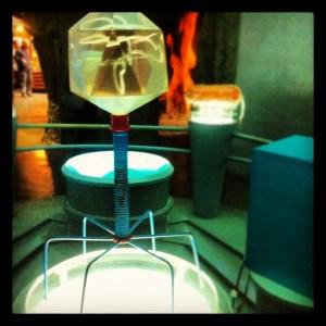 bacteriophages for dinner