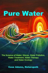 Pure Water by Case Adams