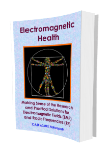 Electromagnetic Health by Case Adams Naturopath