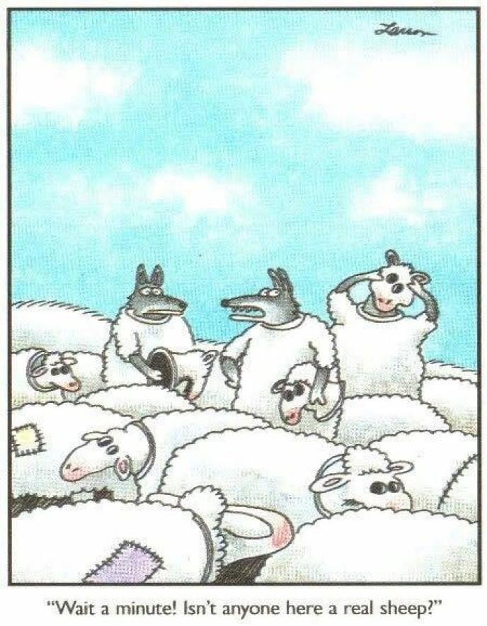 """""""Wait a minute! Isn't anyone here a real sheep?"""""""