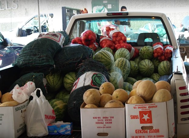 organic fruits and vegetables in back of pick up truck