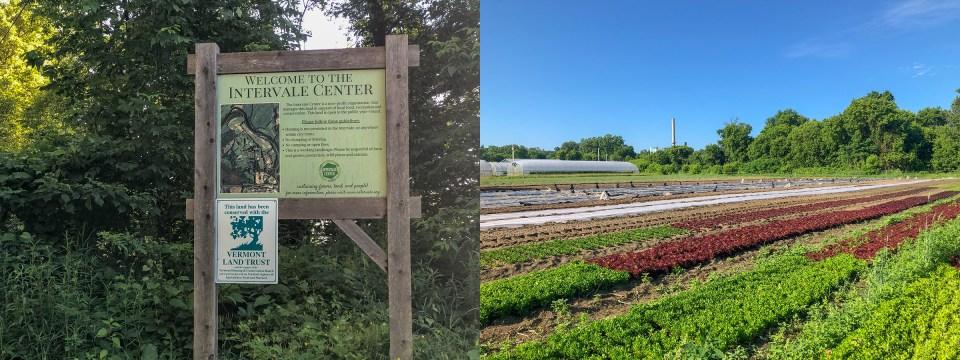 Intervale Community Farm fields in Burlington Vermont