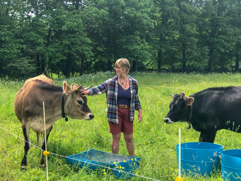 Lisa McCrory in the pasture with her cows at Earthwise Farm and Forest