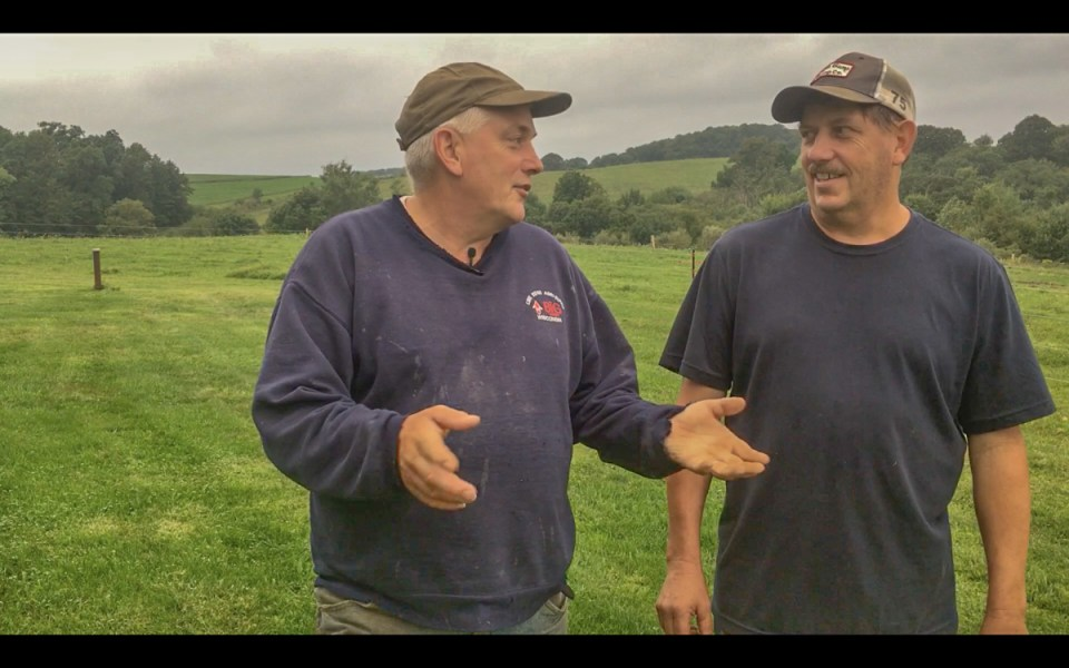 Patrick and Brian McCluskey in their pasture, being interviewed by Real Organic Project