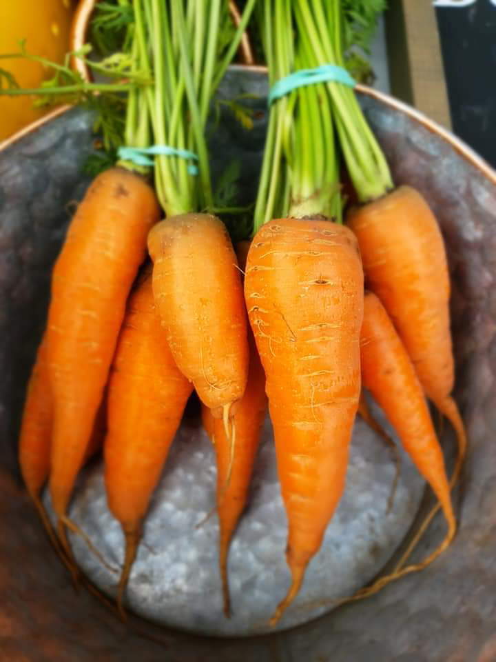 Carrots from KRD Farms