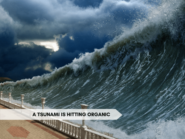 """An image of a large tsunami wave with dark storm clouds behind the wave. Text across the bottom of the image reads """"A tsunami is hitting organic"""""""
