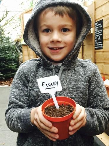 Planting the magic beans