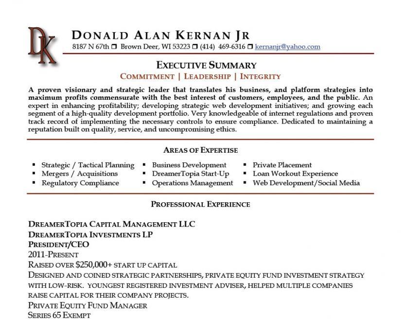 It Executive Resume Summary. Sales Executive Summary Example