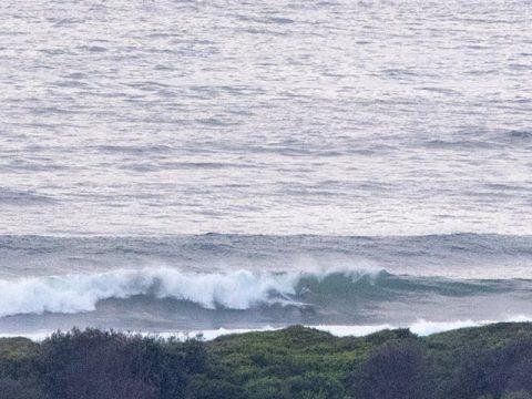 no mans surfing