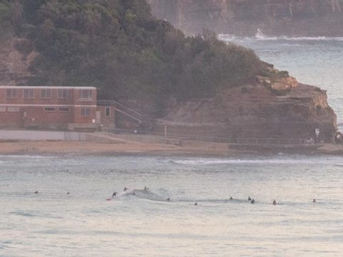 north narrabeen surfing