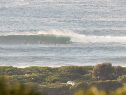 big dy point wave