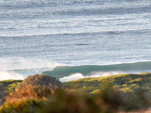 dee why beach wave