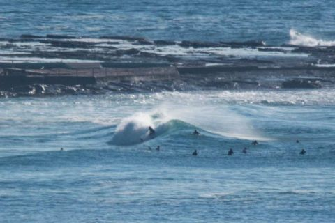 north narrabeen surfers