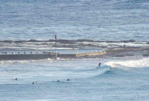 north narrabeen surfiing