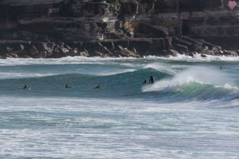 Queenscliff surfers