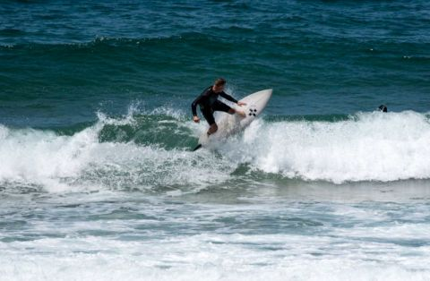 north narrabeen surfers