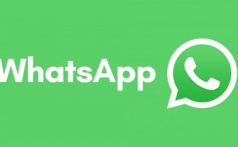 Whatsapp, India, Frequently, forwards, Features, Android, IOS,